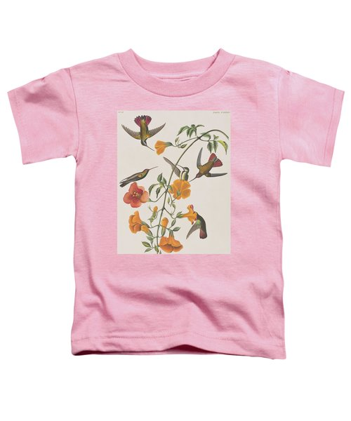 Mango Humming Bird Toddler T-Shirt by John James Audubon