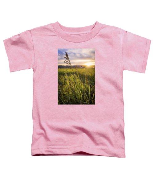 Meadow Light Toddler T-Shirt