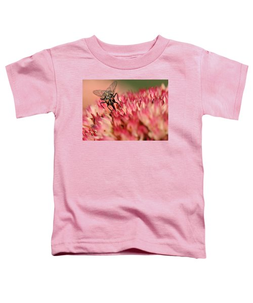 Nectar Hunt Toddler T-Shirt