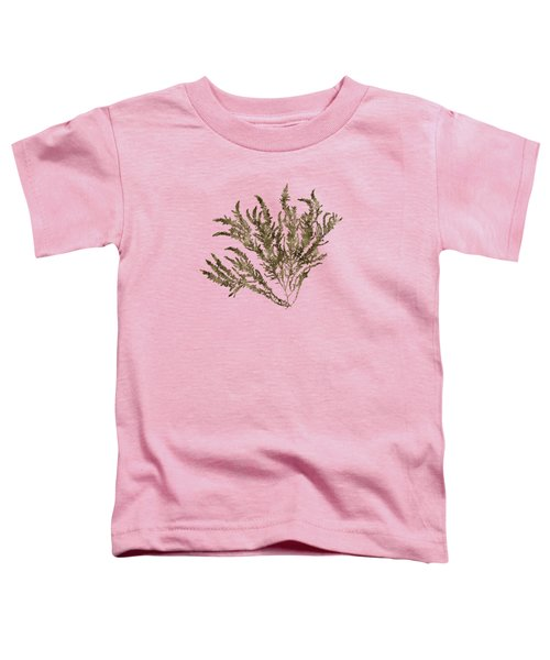 Toddler T-Shirt featuring the mixed media Ocean Seaweed Plant Art Ptilota Sericea Square by Christina Rollo
