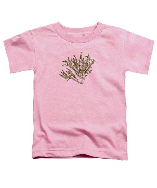 Ocean Seaweed Plant Art Ptilota Sericea Square Toddler T-Shirt