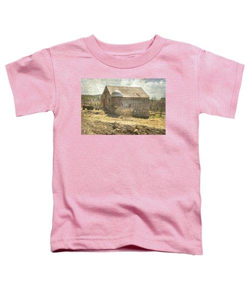 Old Barn Still Standing  Toddler T-Shirt