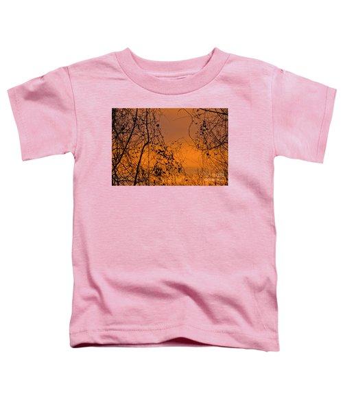 Orange Toddler T-Shirt