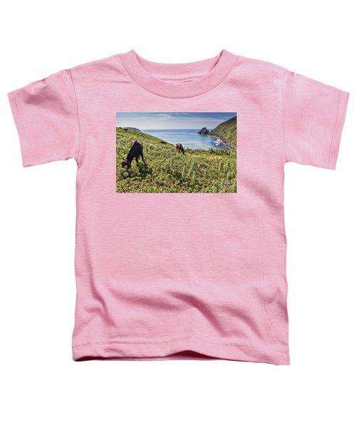 Pasture #2746 Toddler T-Shirt