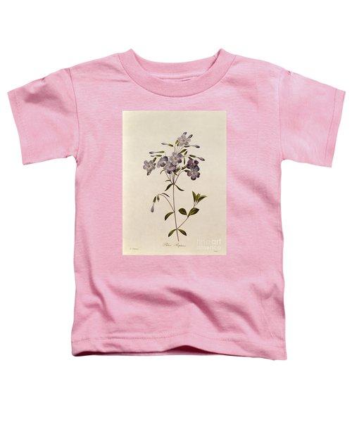 Phlox Reptans Toddler T-Shirt