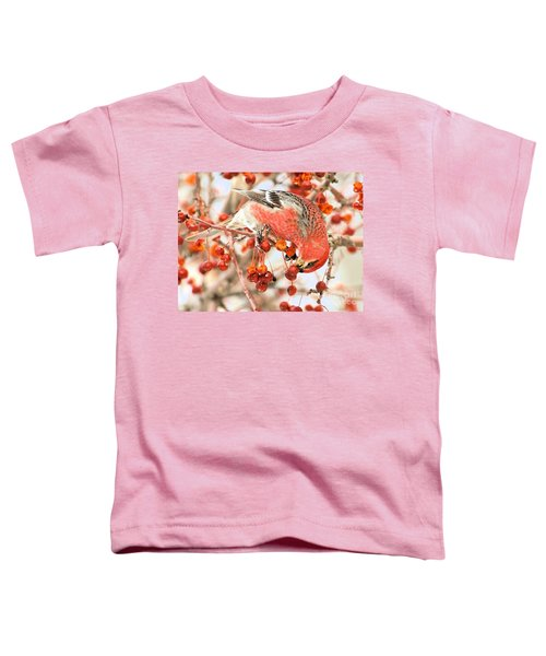 Pine Grosbeak Toddler T-Shirt
