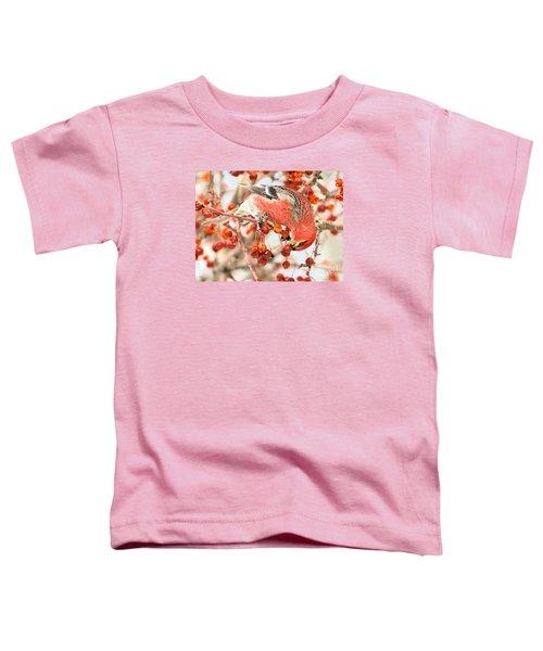 Pine Grosbeak Toddler T-Shirt