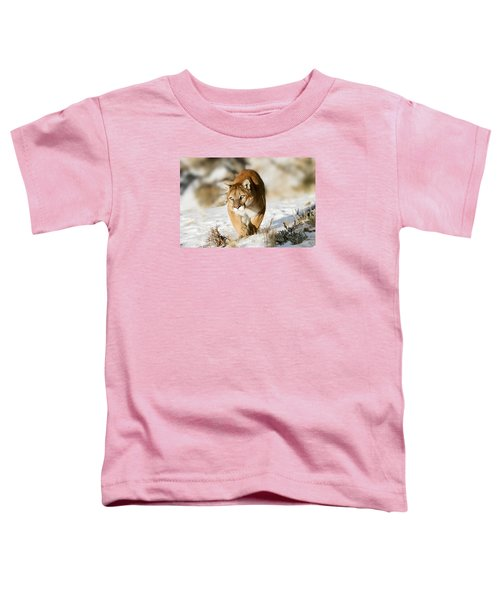 Prowling Mountain Lion Toddler T-Shirt