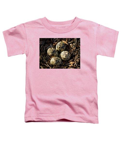Quartet Of Killdeer Eggs By Jean Noren Toddler T-Shirt by Jean Noren