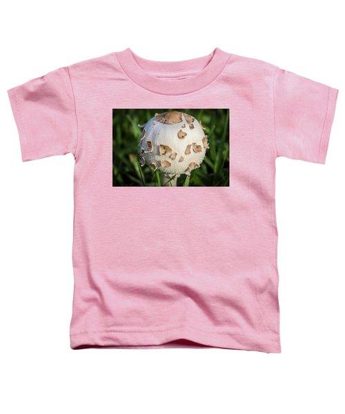 Rain's Child 2 Toddler T-Shirt