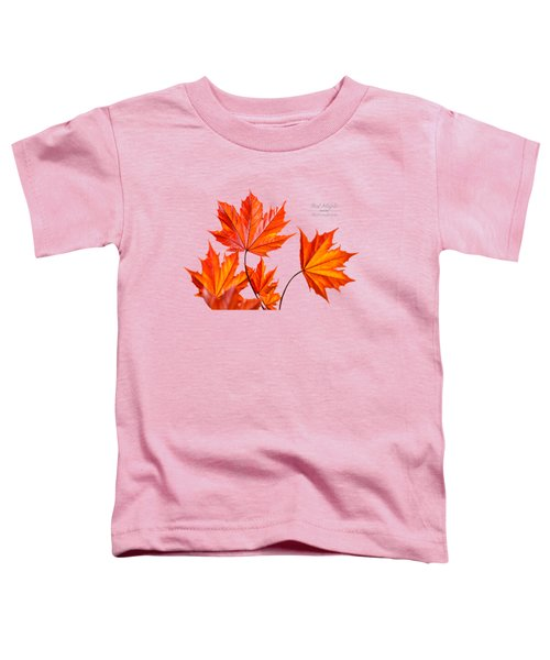 Red Maple Toddler T-Shirt by Christina Rollo