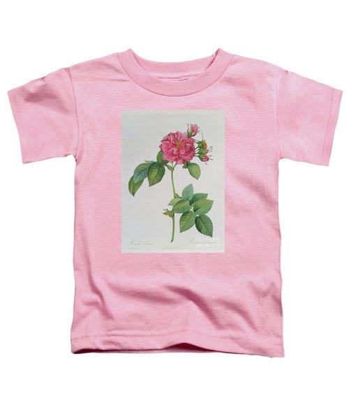 Rosa Turbinata Toddler T-Shirt