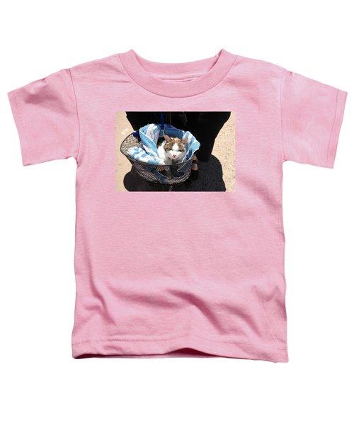 Royal Carriage Toddler T-Shirt