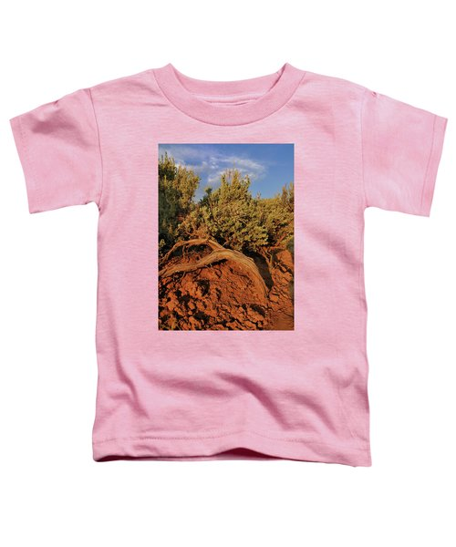 Sagebrush At Sunset Toddler T-Shirt