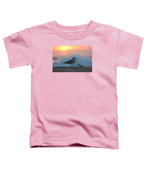 Seagull Seascape Sunrise Toddler T-Shirt