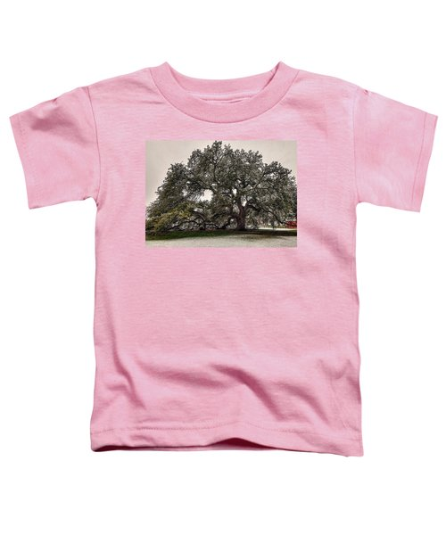 Snowfall On Emancipation Oak Tree Toddler T-Shirt