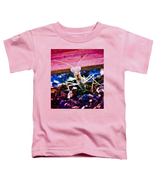 Sonoran Desert Ground Mantis Toddler T-Shirt