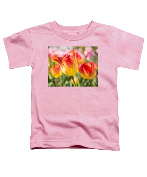 Spring Touches My Soul Toddler T-Shirt