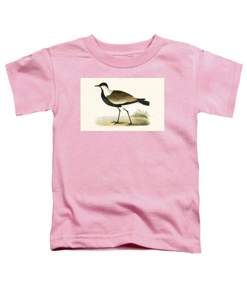 Spur Winged Plover Toddler T-Shirt by English School