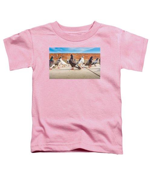 Street Pigeons. Toddler T-Shirt