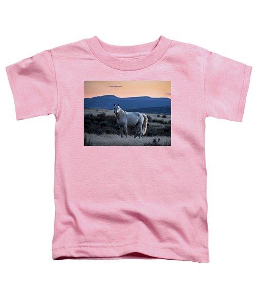 Sunset With Wild Stallion Tripod In Sand Wash Basin Toddler T-Shirt