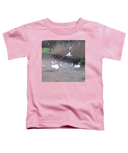Swans 4 Toddler T-Shirt