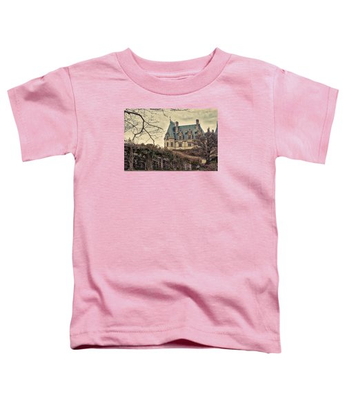 The Biltmore Mansion In The Fall Toddler T-Shirt