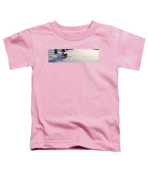 The Bird House Bench Toddler T-Shirt