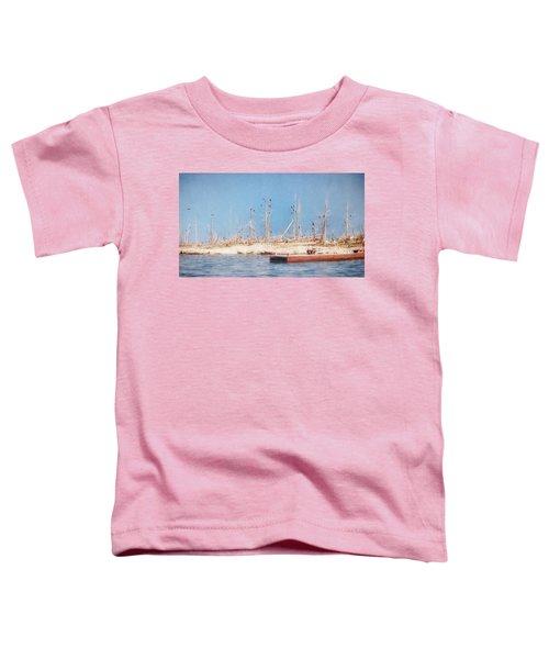 The Cormorants At Deaths Door Toddler T-Shirt