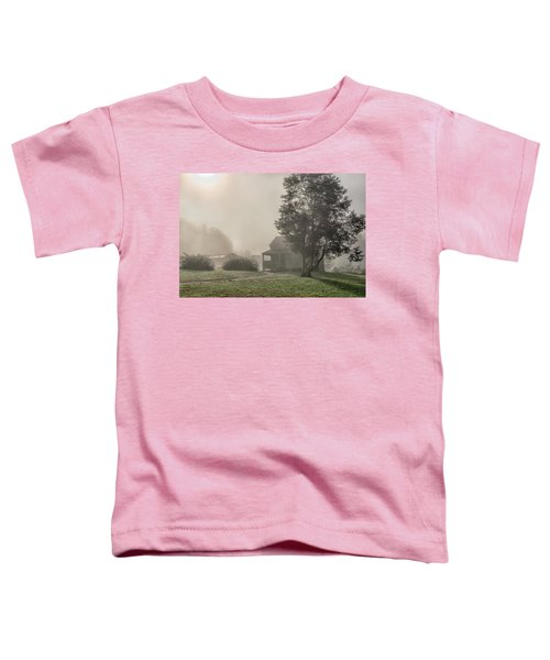 The Dan Lawson Place Toddler T-Shirt