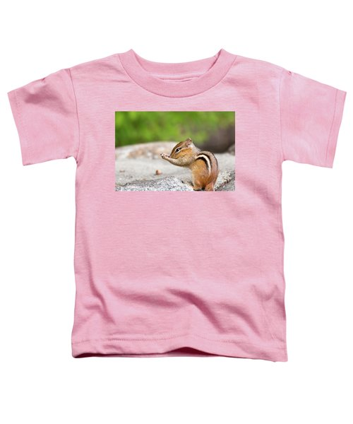The Praying Chipmunk Toddler T-Shirt