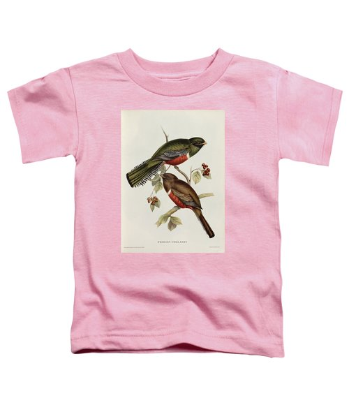Trogon Collaris Toddler T-Shirt by John Gould