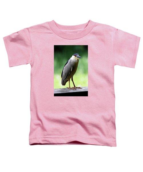 Upstanding Heron Toddler T-Shirt