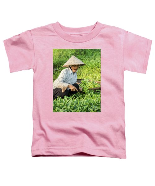 Vietnamese Woman In Rice Paddy Toddler T-Shirt