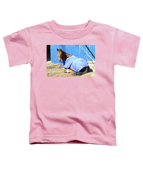 Warm Winter Day At The Horse Barn Toddler T-Shirt