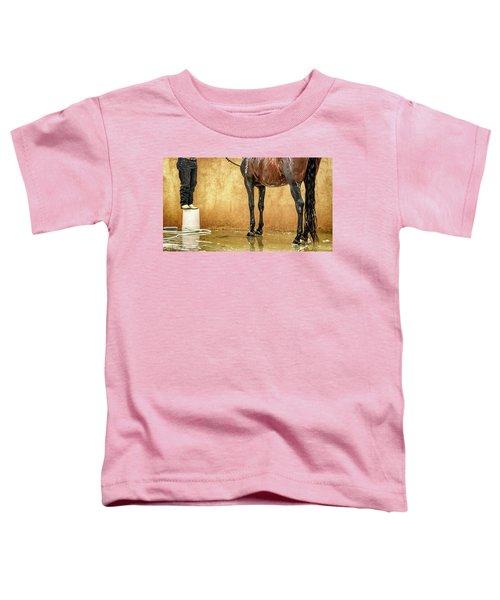 Washing A Horse Toddler T-Shirt