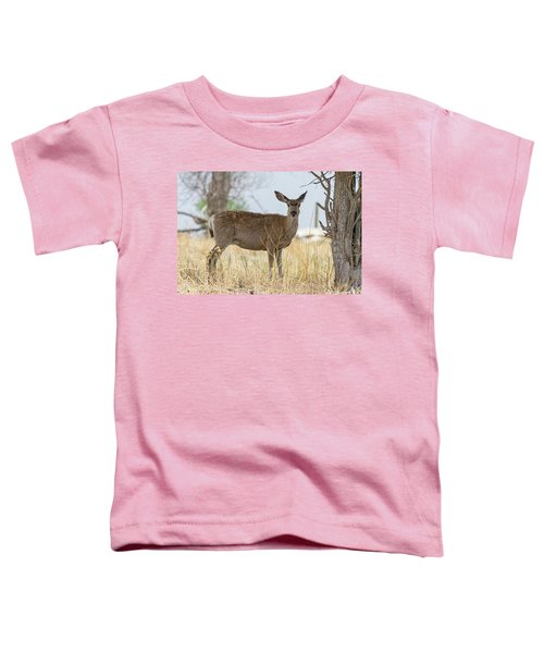 Watching From The Woods Toddler T-Shirt by James BO Insogna