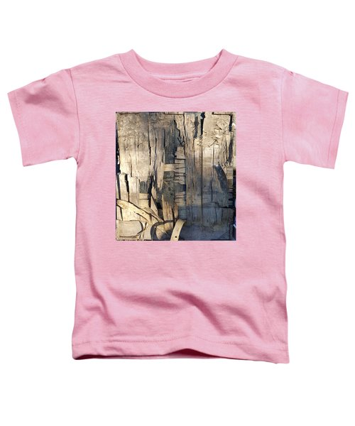 Weathered Plywood Composition Toddler T-Shirt