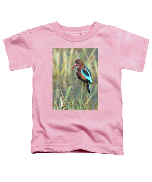 White-throated Kingfisher 13 Toddler T-Shirt