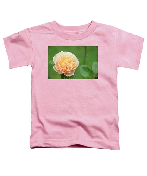 Yellow Rose In December Toddler T-Shirt