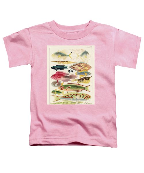 Great Barrier Reef Fishes From The Great Barrier Reef Of Australia  1893  By William Saville-kent  1 Toddler T-Shirt