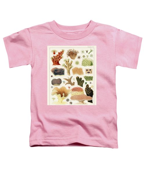 Great Barrier Reef Corals From The Great Barrier Reef Of Australia  1893 By William Saville-kent  1 Toddler T-Shirt