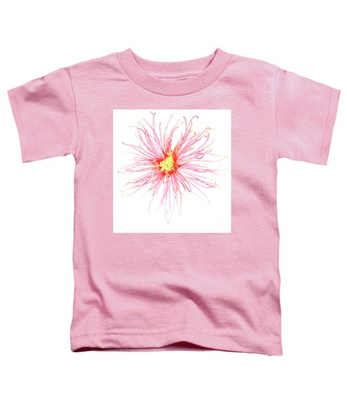 B760/1832 Toddler T-Shirt