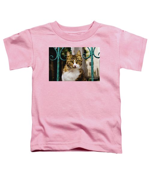 Cat On A Fence Toddler T-Shirt