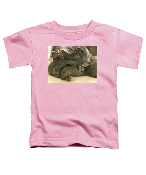 Cloud And Myst Toddler T-Shirt