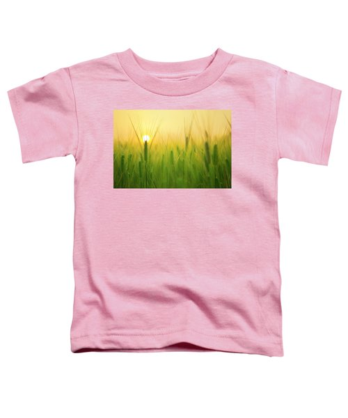 Dawn At The Wheat Field Toddler T-Shirt