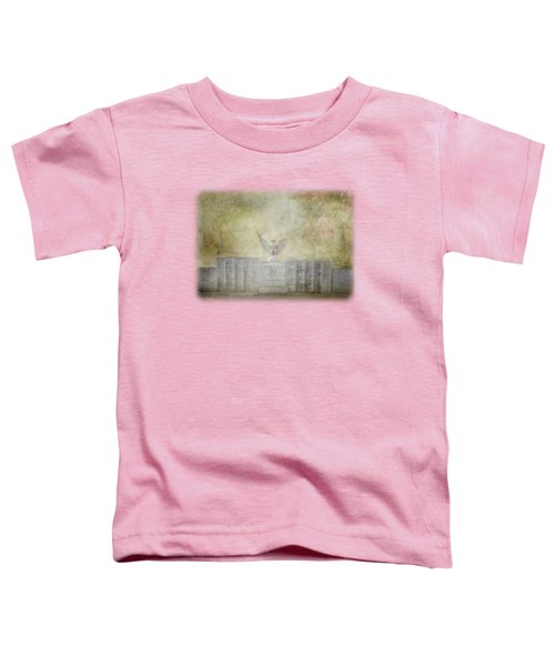 Dekalb County Alabama War Memorial Toddler T-Shirt