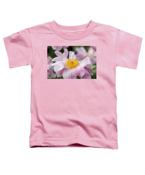 Delicate Pink Peony Toddler T-Shirt