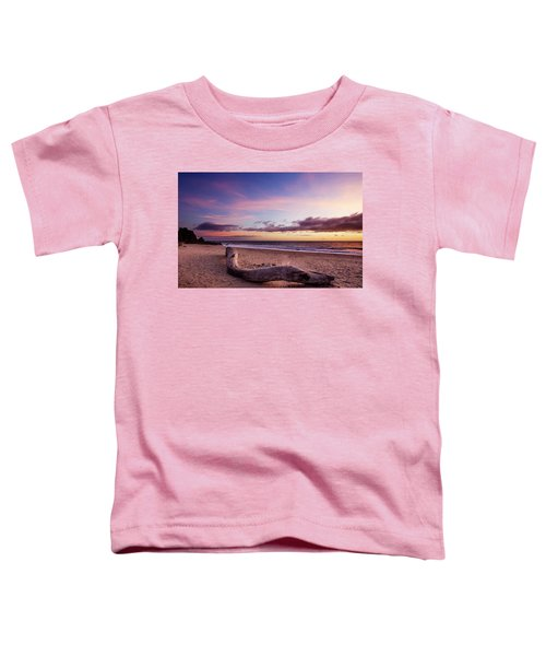 Driftwood At Sunset Toddler T-Shirt