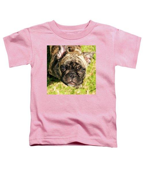French Bull Dog Toddler T-Shirt